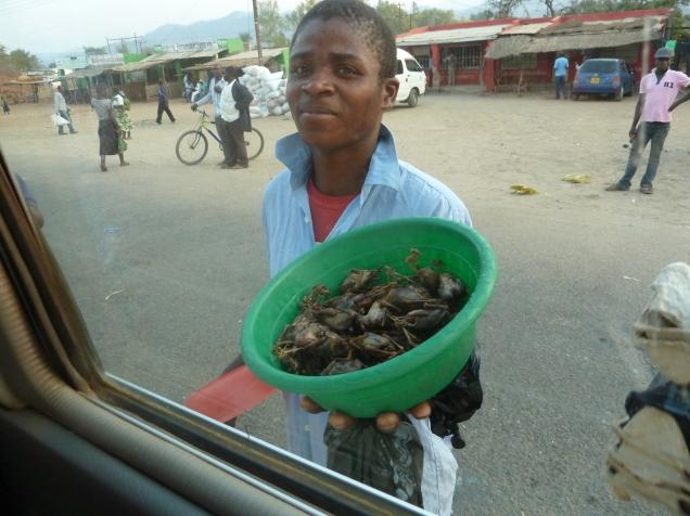 Malawis svar paa polser og boller --> grillet villmus