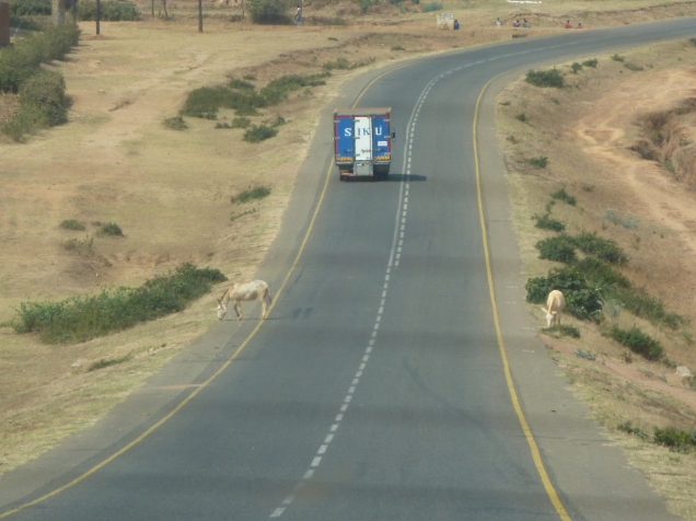 Den malawiske motorveien er ikke kun forebeholdt kjoretoyene :)