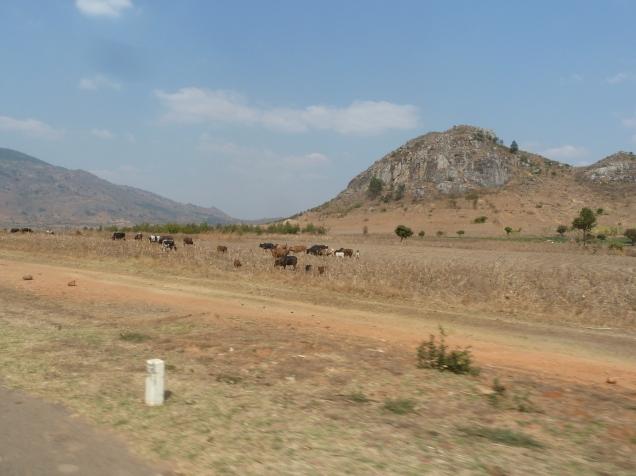 Den hvite stolpen symboliserer landegrensen mellom Malawi og Mosambik